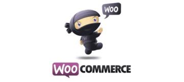 Как открыть магазин прямой доставки с WooCommerce: 7 простых шагов