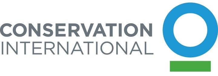 Пример дизайна логотипа Conservation International