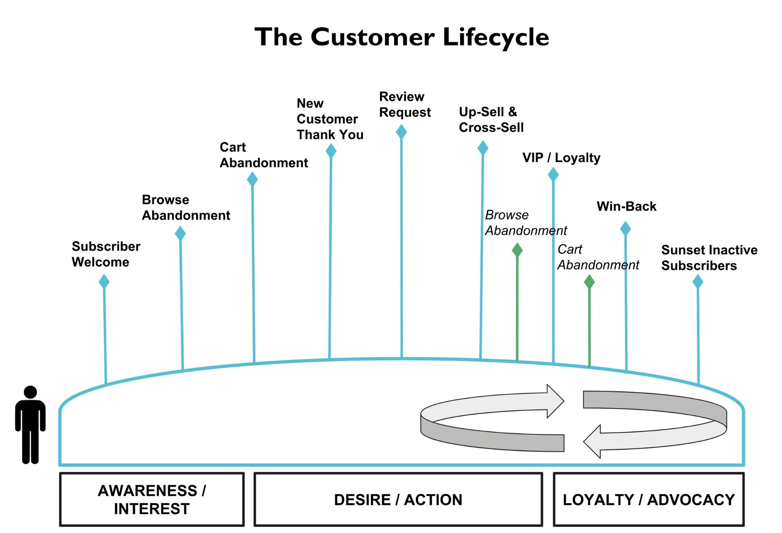 Жизненный цикл потребителя
