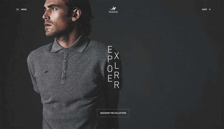 Дизайн веб-сайта электронной коммерции Fangio
