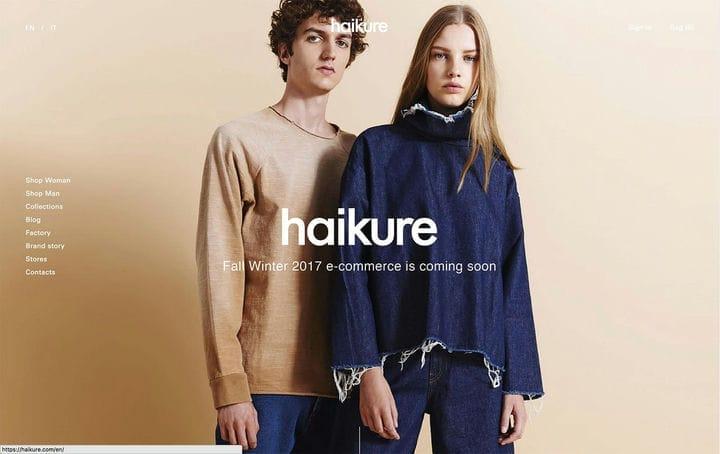 Дизайн веб-сайта электронной коммерции Haikure