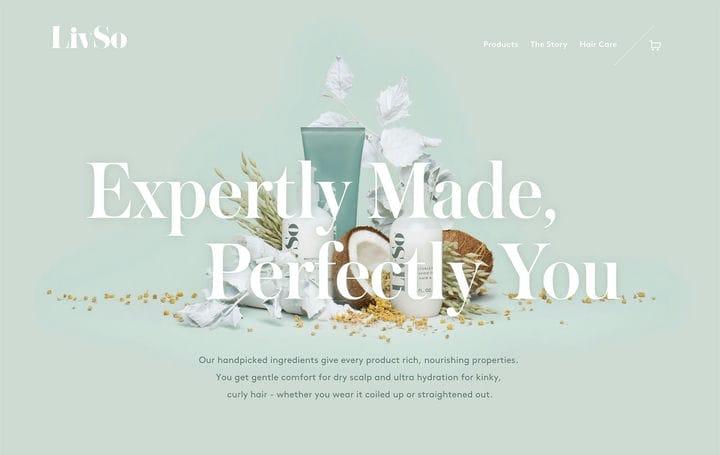 Дизайн сайта электронной коммерции LivSo