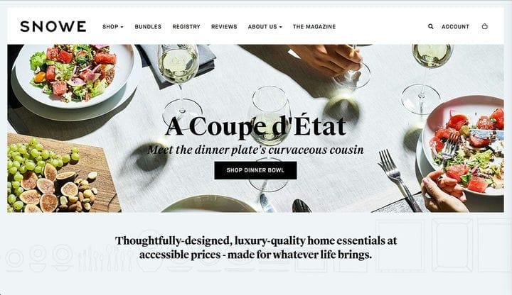 Дизайн веб-сайта электронной коммерции Snowe