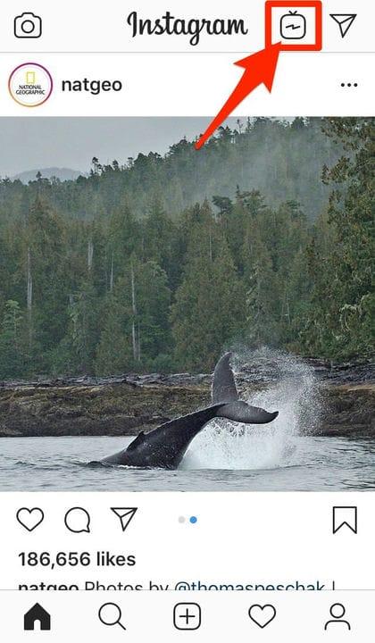 Лучший формат видео для Instagram и характеристики в 2021 году