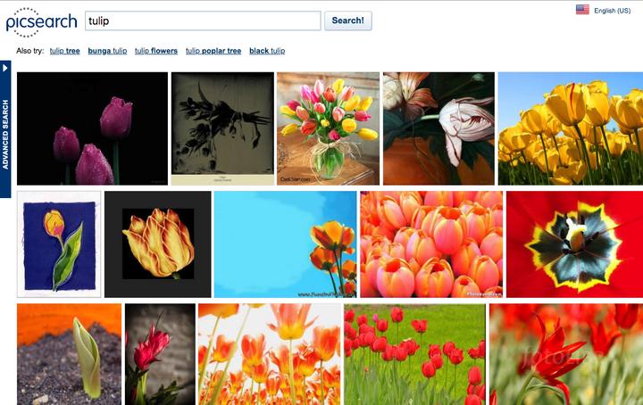 8 лучших поисковых систем по картинкам: как легко менять местами поиск картинок