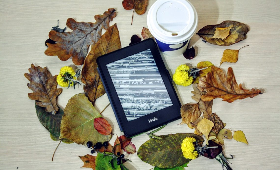 Are Sales Of Ebooks Really Declining?